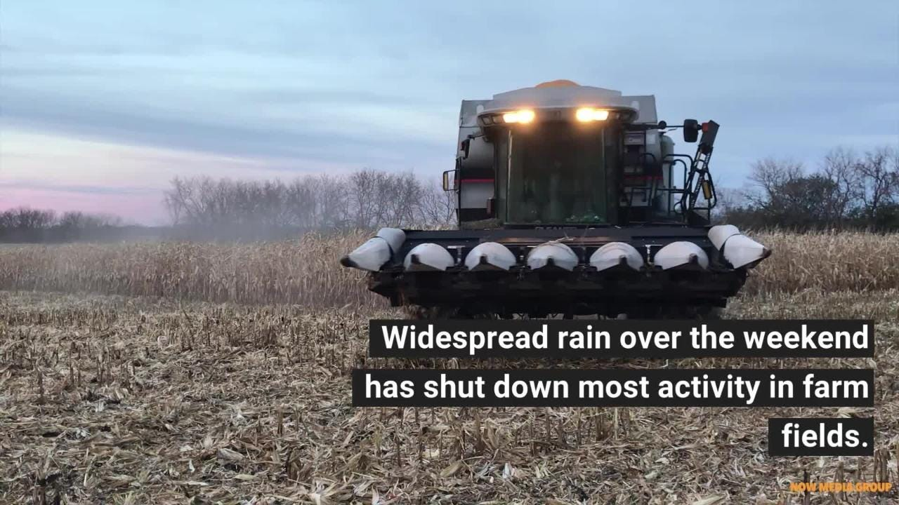 Farmers have faced one challenge after another this year: late planting,  flooding, falling commodity prices, crop disease - now a wet, late harvest.