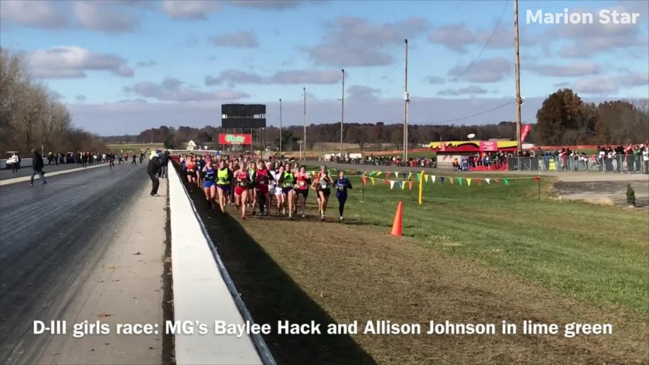 Here are highlights of area runners at Saturday's state cross country championships at National Trail Raceway.