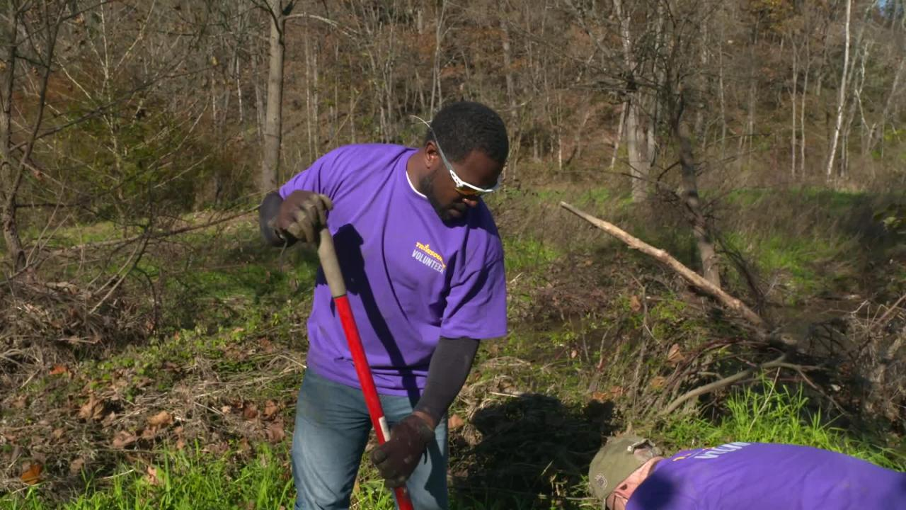 Transource Energy volunteers plant seedlings in November 2018. The company has pledged $25,000 to help clean up the Chesapeake Bay.