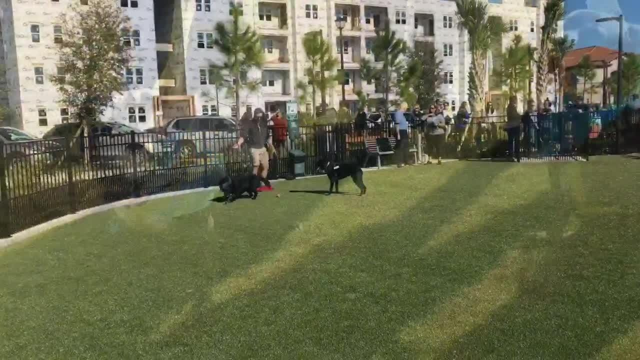 The Viera Co. has opened a dog and children's park in Viera, just  of The Avenue Viera.