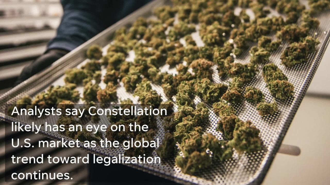 Constellation Brands invested $4 billion into Canadian cannabis producer Canopy Growth this year.