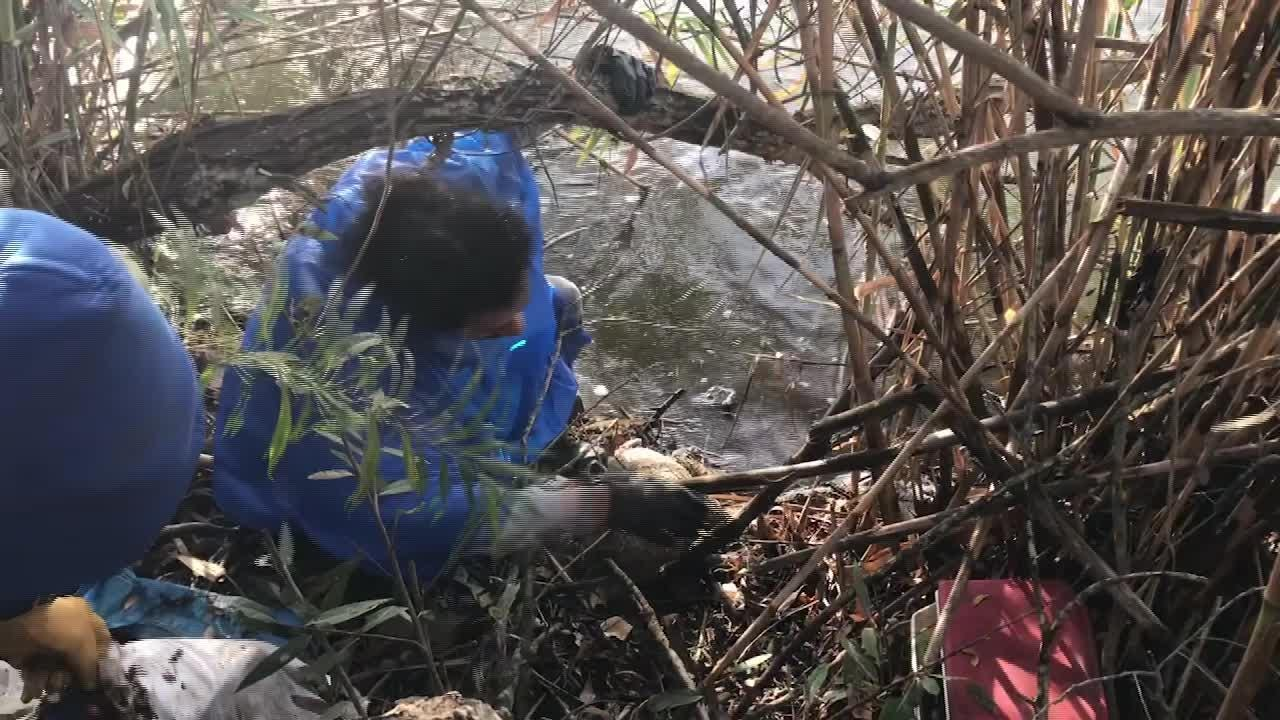 Workers clear trash Thursday along the Santa Clara River bottom near the Ventura city line. The city of Ventura organized the cleanup near homeless encampments along the embankment to minimize trash flowing to the ocean.