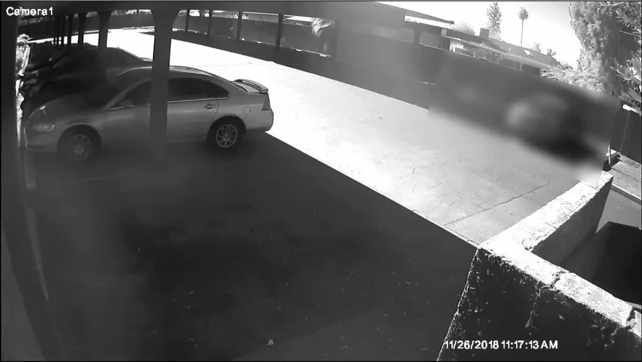 Phoenix police seek the public's help to identify a man who is suspected of burglarizing a home and setting a detached garage on fire on Nov. 26.