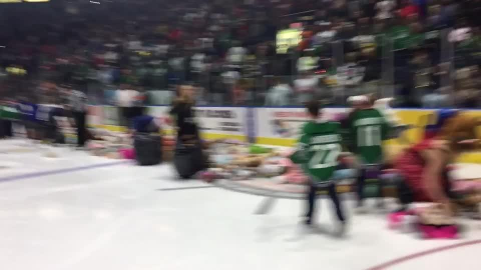Dozens of people help get thousands of stuffed animals off the ice.