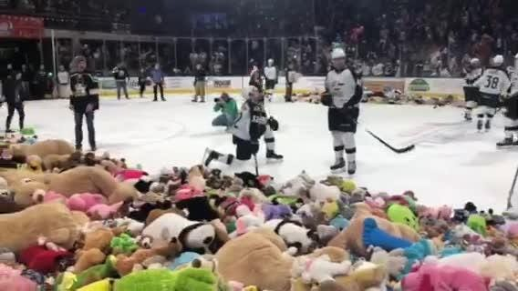 Colorado Eagles fans throw thousands of stuffed animals onto the ice after a goal against the San Diego Gulls.