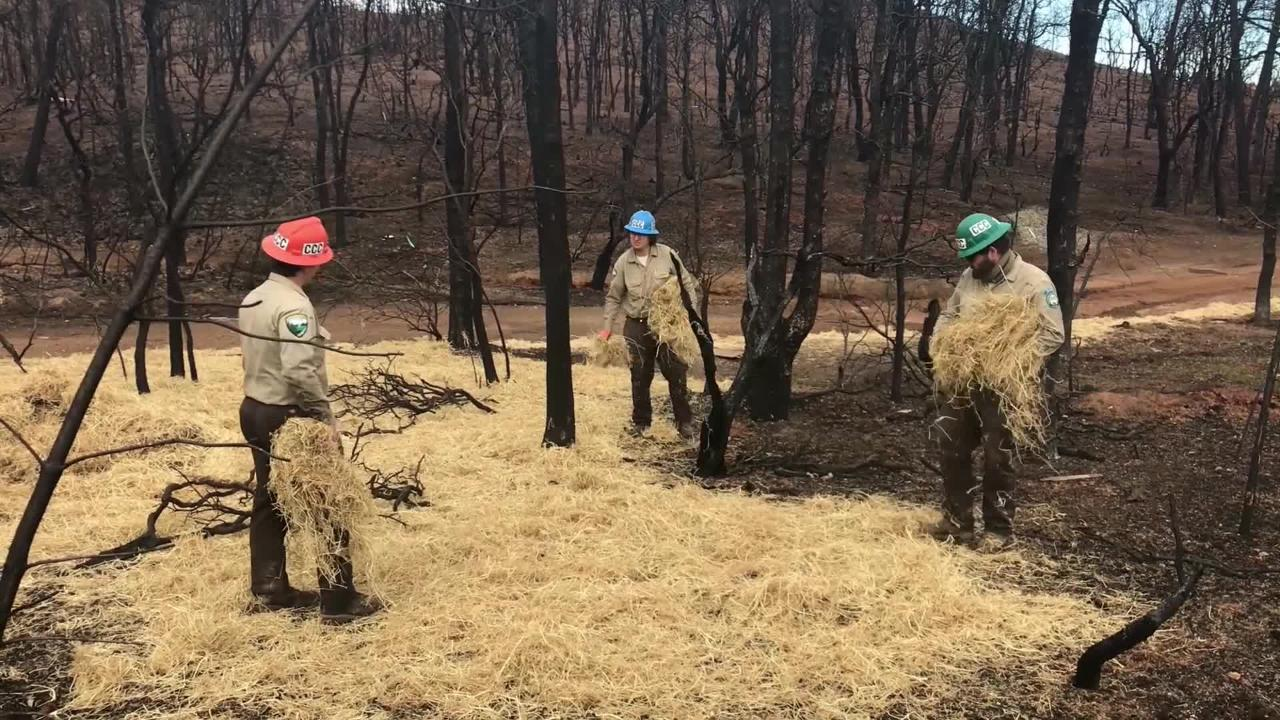 Crews set out erosion control materials to keep sediment out of creeks in the Carr Fire area.
