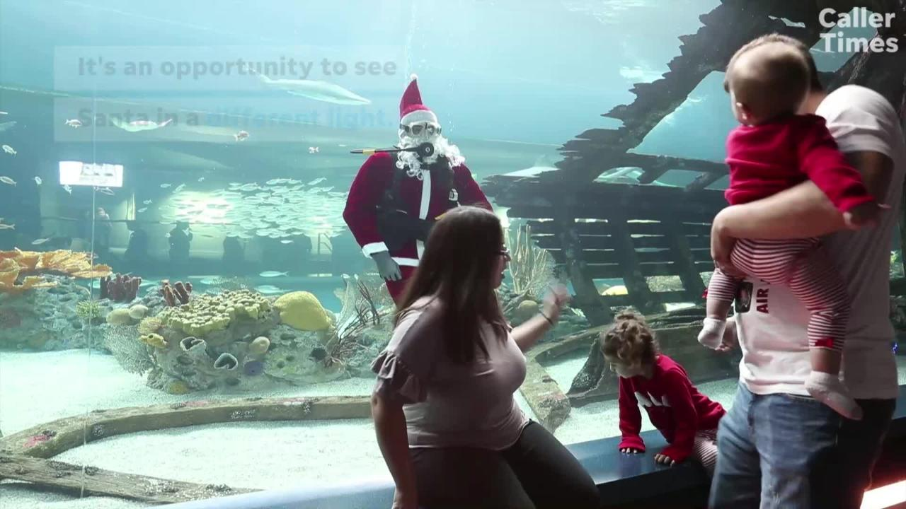 Scuba Santa will make one final appearance at 2:30 p.m. on Christmas Eve at the Texas State Aquarium.