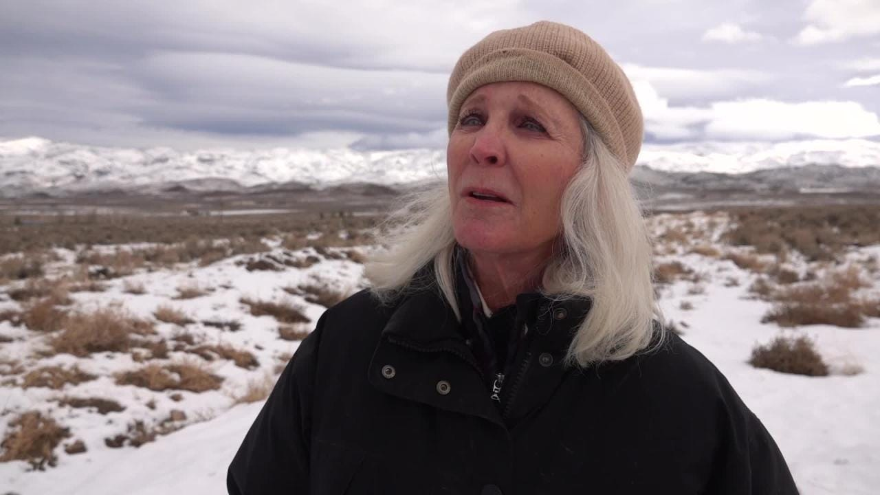 Palomino Valley resident Kate Carlson describes people herding horses she cared for off her property in what she says was an unlawful roundup.