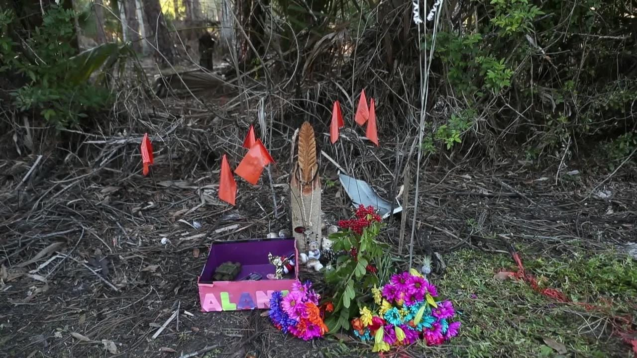 VIDEO: Remembering Alana Tamplin, family and friends talk about girl killed after dropping sister off at bus stop