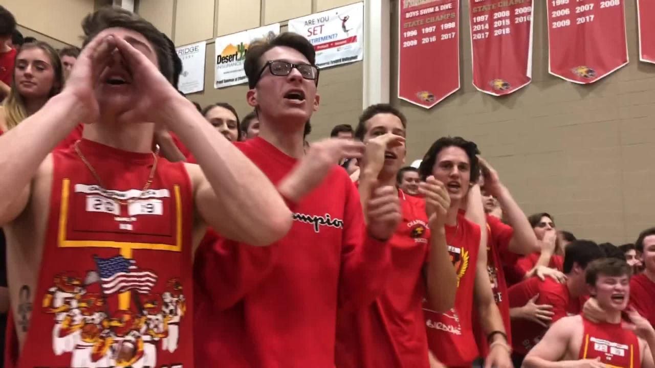 Get a closer look at the Birdcage, the rowdy high school basketball section at Chaparral boys basketball games. @CtownBirdcage
