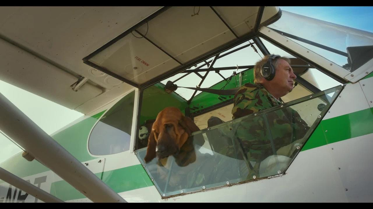 los angeles cceee 87739  Superpower Dogs   See heroic pups saving lives in a new IMAX trailer