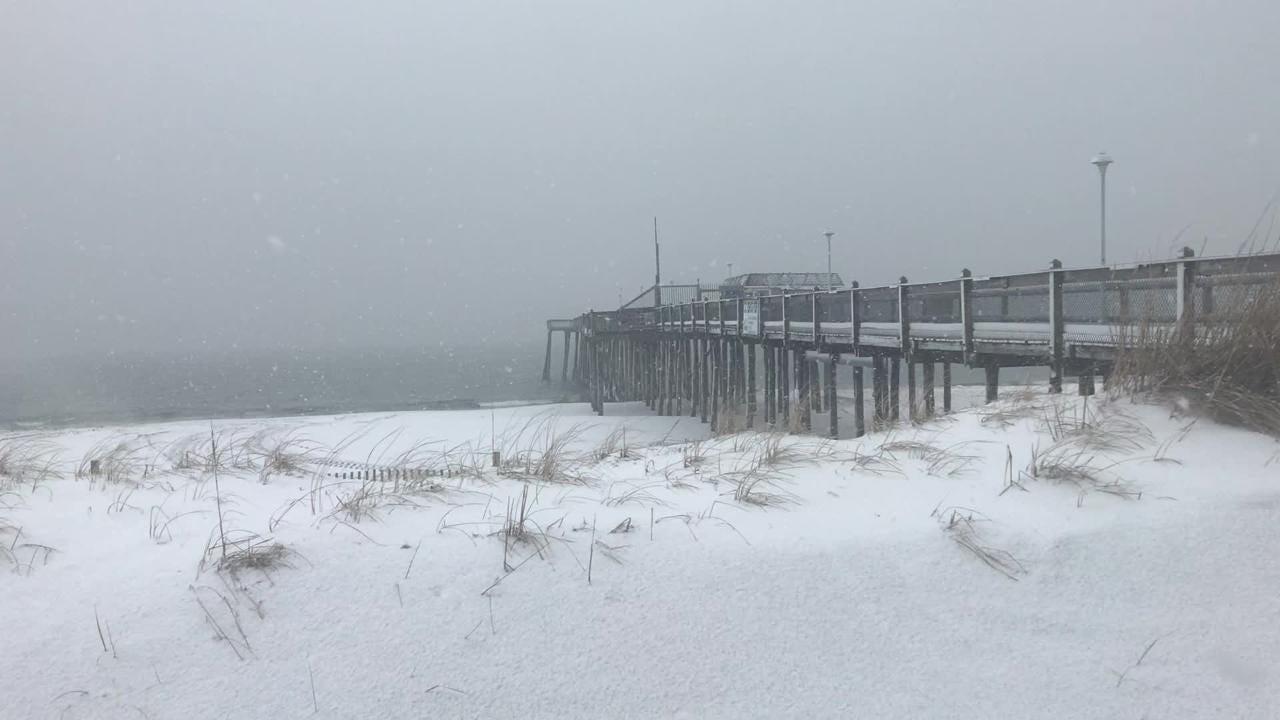 Snow blanketed Delmarva on Friday, Feb. 1, 2019.