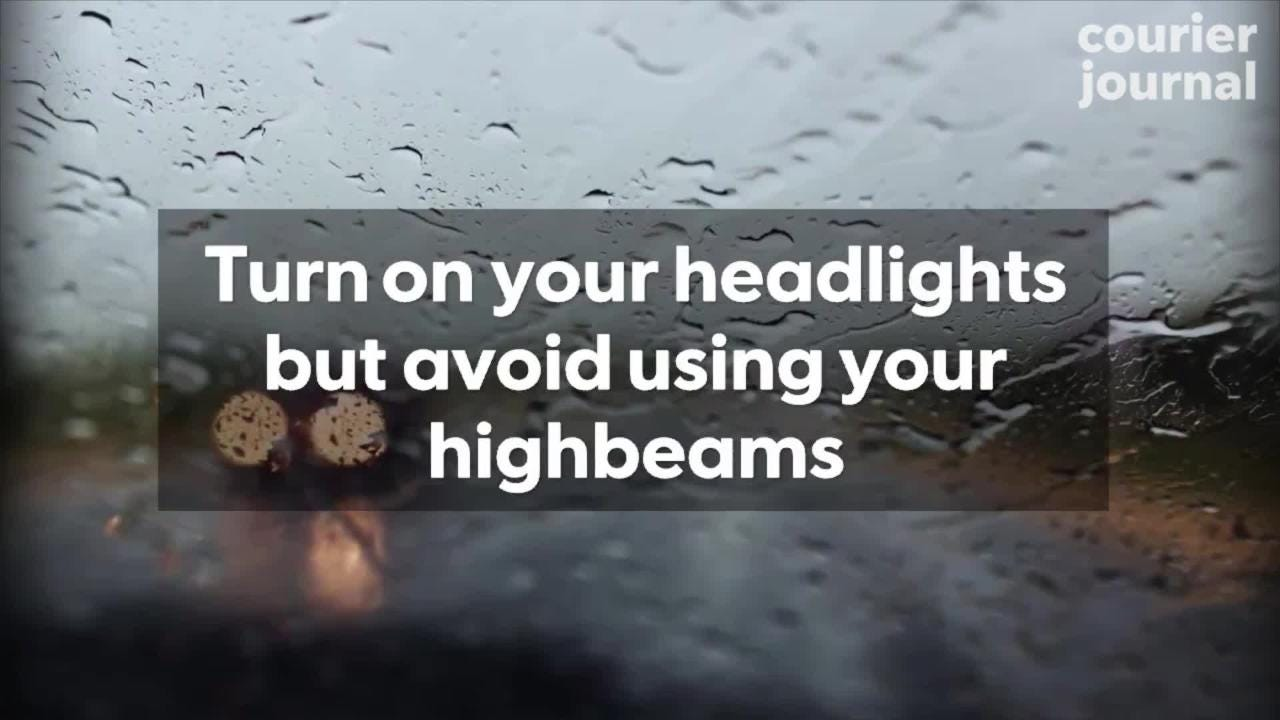 7 tips for driving in the heavy rain