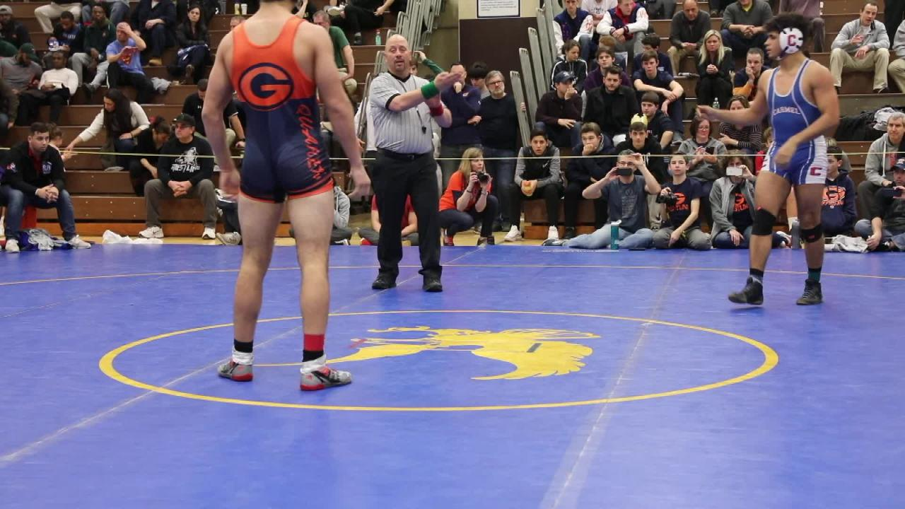 Wrestling: Fox Lane repeats as team champion