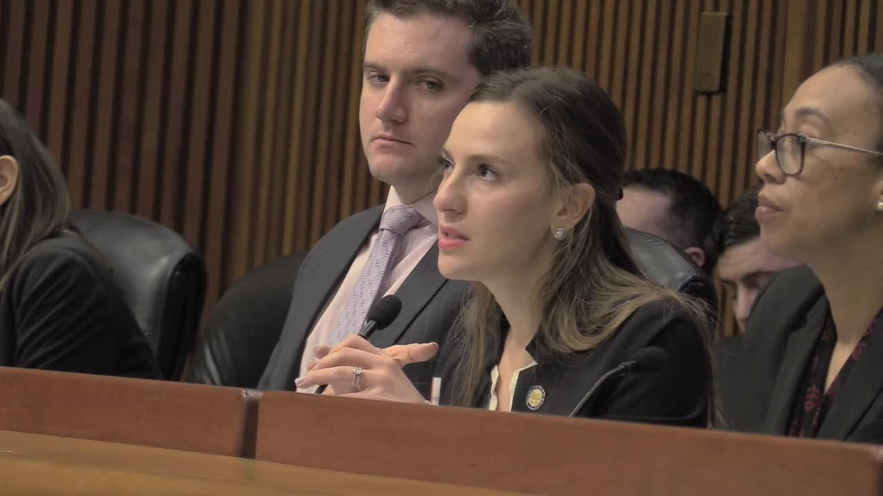 Sen. Alessandra Biaggi speaks to victims who testified at a sexual harassment hearing on Wed., Feb. 13, 2019.
