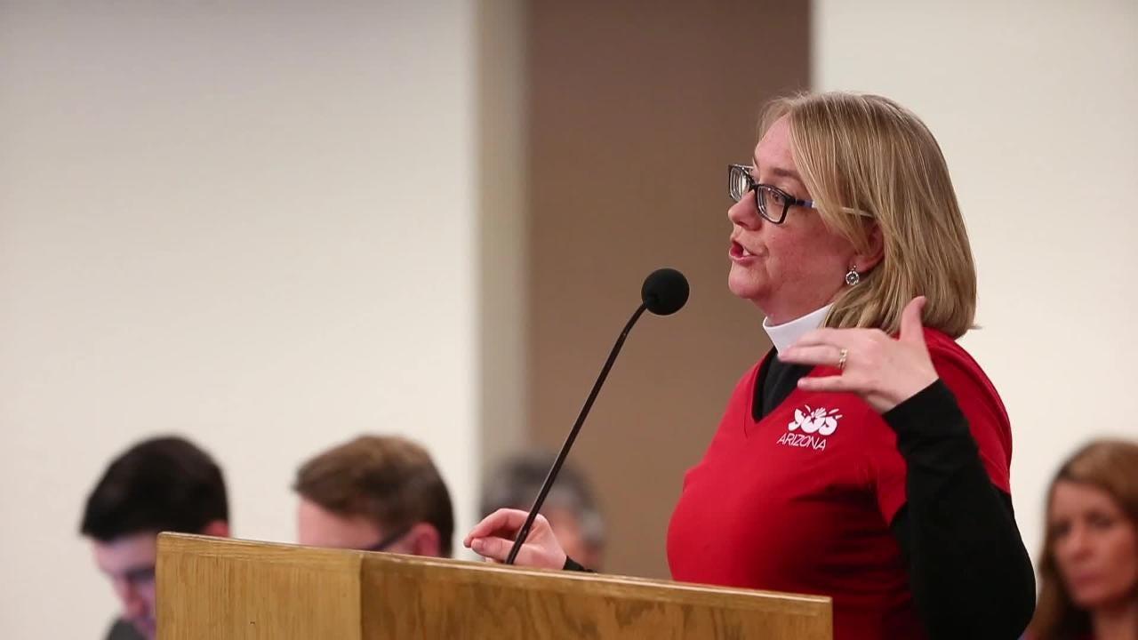 State senator J.D. Mesnard exchanges words with Rev. Anne Ellsworth during school voucher hearing.