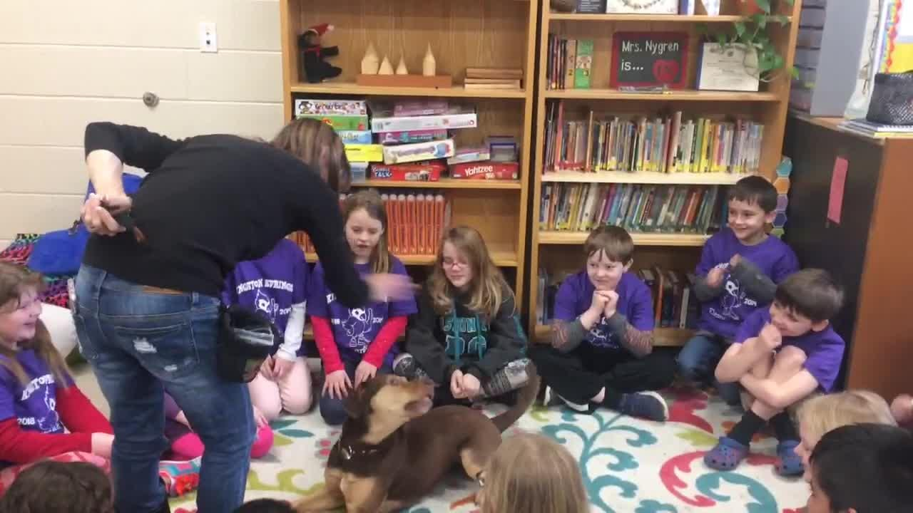 Debbie Pearl, who adopted Shelby and owns Paws For Effect and Dream Fetchers, does tricks with her at Kingston Springs Elementary School.