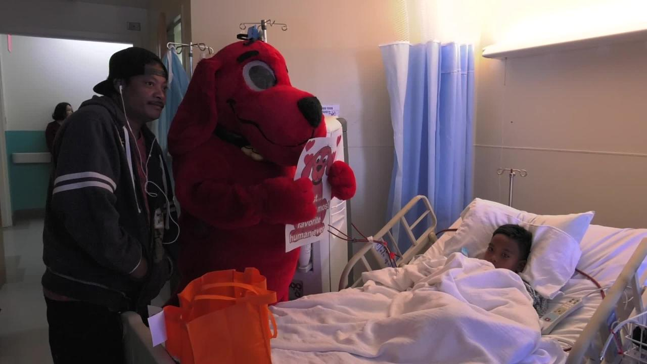 Clifford the Big Red Dog visited the children at Guam Memorial Hospital on Feb. 14, 2019.