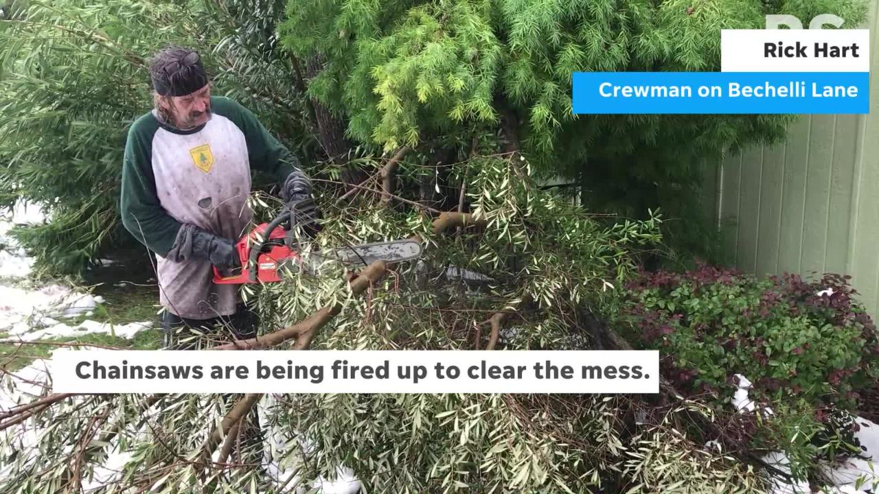 A winter storm in Redding toppled trees, creating a mess and work for cleanup crews.