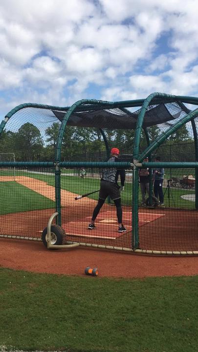 Detroit Tigers' Nicholas Castellanos takes spring training batting practice