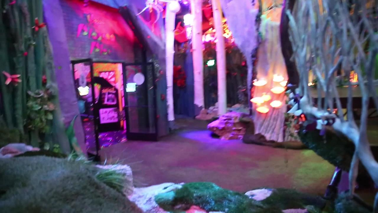 "Meow Wolf's ""The House of Eternal Return"" is an immersive art exhibit built in a former bowling alley in Santa Fe, New Mexico."