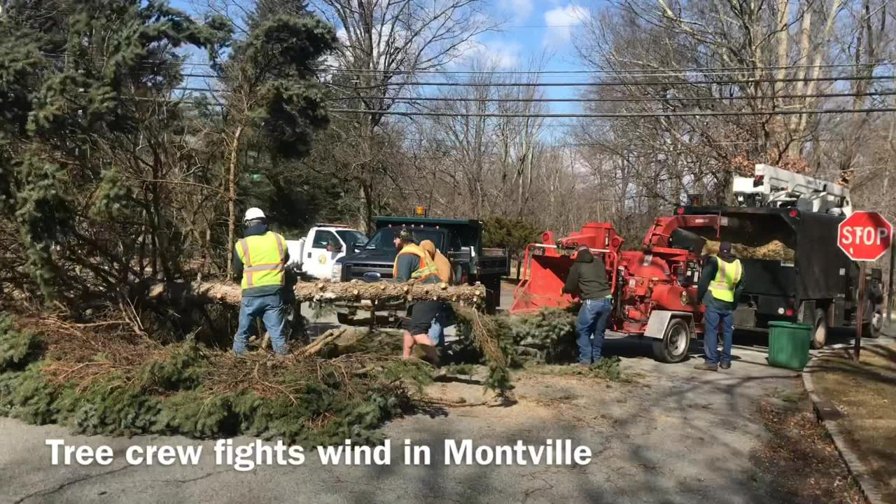 A tree crew struggles to remove a fallen pine tree in high winds on Konner Road in Montville. Feb. 25, 2019.