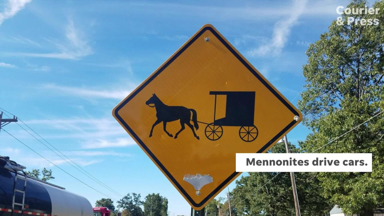 The Amish began in 1693 in Switzerland and Alsace (now France) as a conservative movement within the larger Mennonite body.