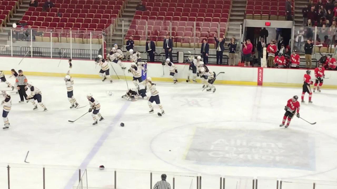 University School of Milwaukee celebrates after beating Neenah/Hortonville/Menasha in the WIAA boys hockey state championship game in Madison.