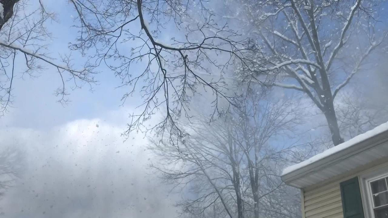 Heavy snow blows from trees in Parsippany after wet, heavy snow fell overnight. March 4, 2019