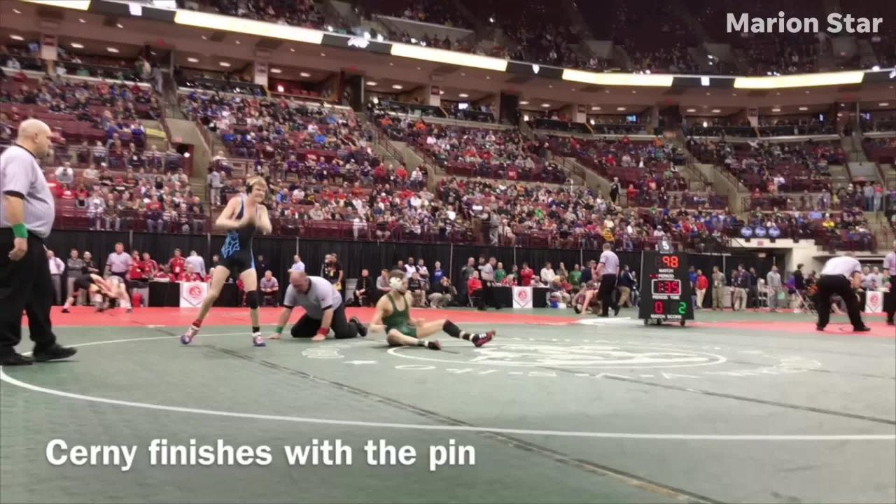 Drake Cerny, Hadyn Danals and Mitchell Miracle all made the podium at this weekend's state wrestling championships at Ohio State.
