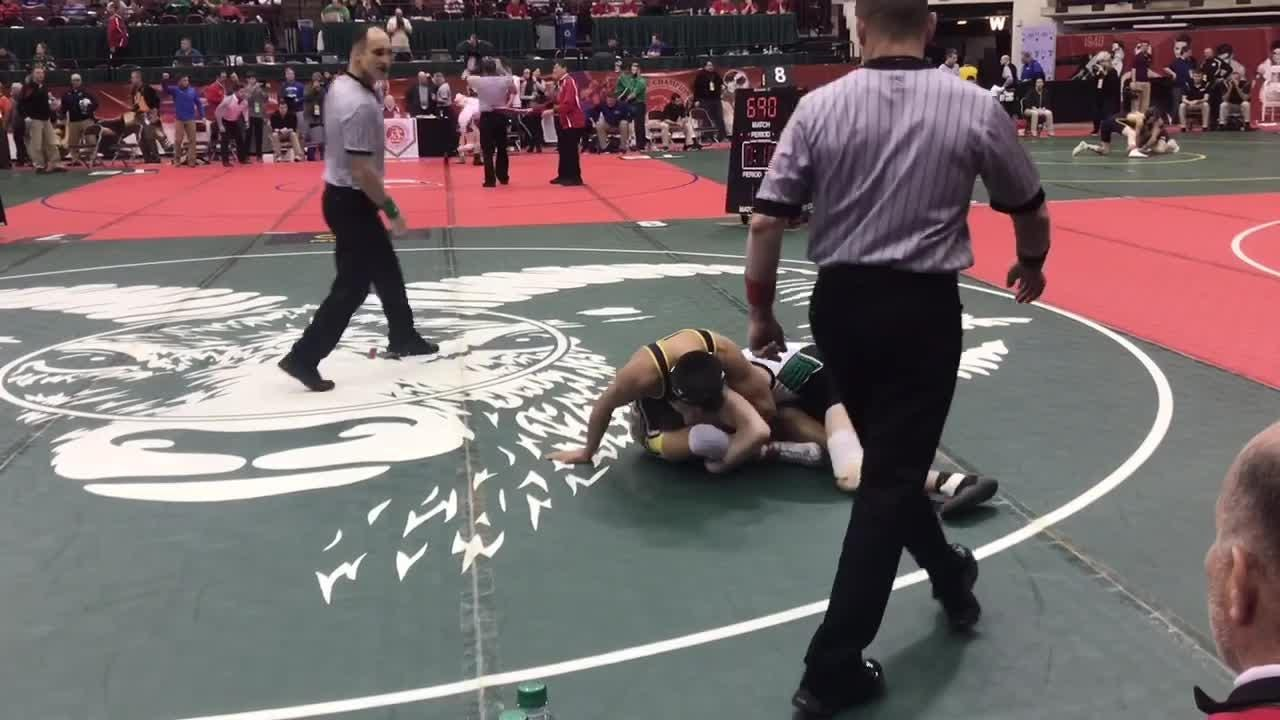 Licking County had seven wrestlers earn medals, including Granville's Douglas Terry, who finished as state runner-up at 145 pounds.