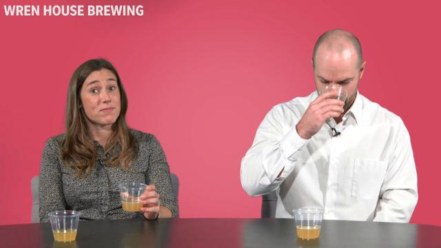 We tested eight Arizona craft beers - four of which were made with recycled water - to see if our panel could taste the difference.