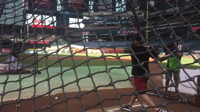 Coyotes take batting practice at Chase Field