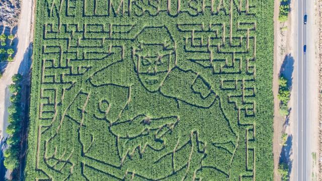 Shane Doan talks about his corn maze, September 27, 2017, at Schnepf Farms in Queen Creek. Mark Henle/The Republic