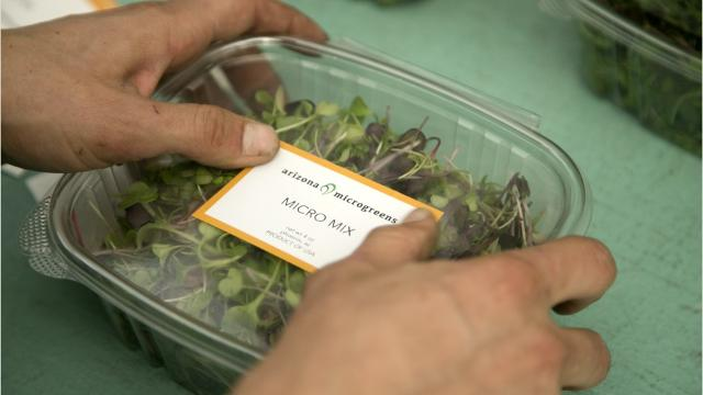 Microgreens are much more than a garnish you push aside on your dinner plate. They're delicate, nutritious and utterly delicious. In Phoenix, they likely come from a local farm called Arizona Microgreens.