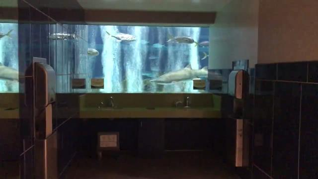 The restroom at OdySea Aquarium near Scottsdale was voted America's best restroom in Cintas' nationwide contest.