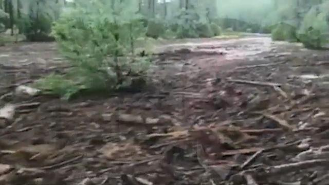 9 dead, 1 still missing in Arizona flash flood
