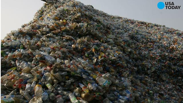 Humans have produced 18.2 trillion pounds of plastic since the 50s. That's equal in size to 1 billion elephants.
