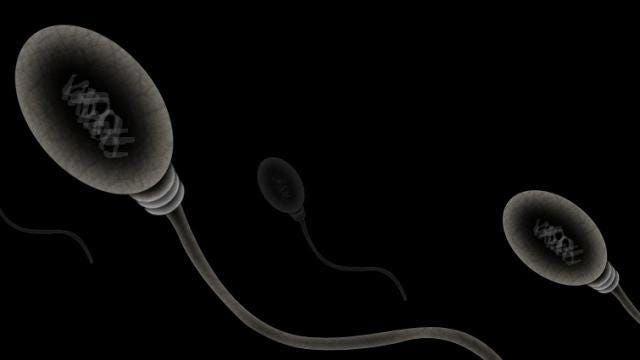 Sperm count is declining in western men, And scientists don't know why
