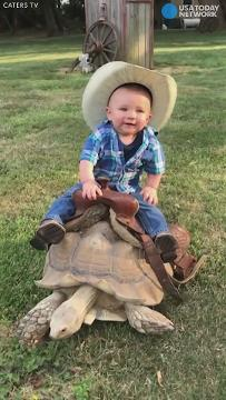 Baby rides tortoise right into our hearts