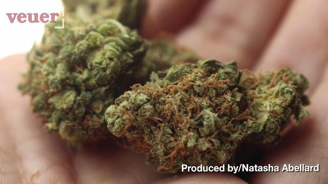 Marijuana might be more harmful than cigarettes