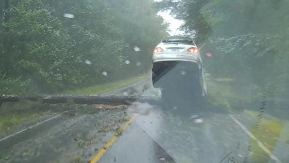 Close call: Georgia driver in Hurricane Irma almost gets hit by tree