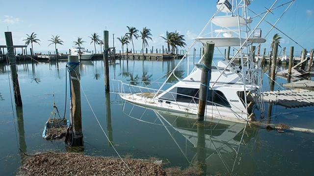 "Florida Keys fishing boats: ""We're out of business 'til Christmas"""