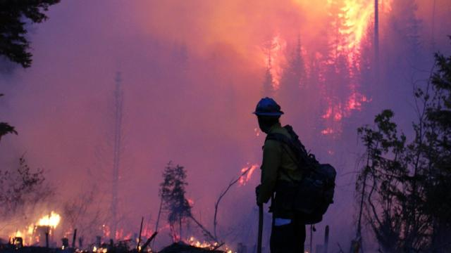 As wildfires get worse, USDA says firefighters need more funding