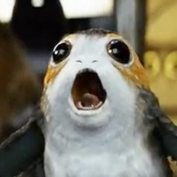 Porg is the 'Star Wars' cutie we never knew we needed