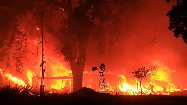 California Wildfires Scorch Marijuana Crops