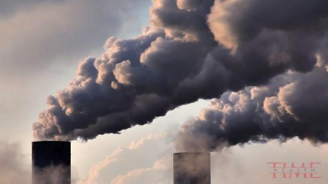 Global pollution is the world's biggest killer and a threat to survival of mankind, study finds