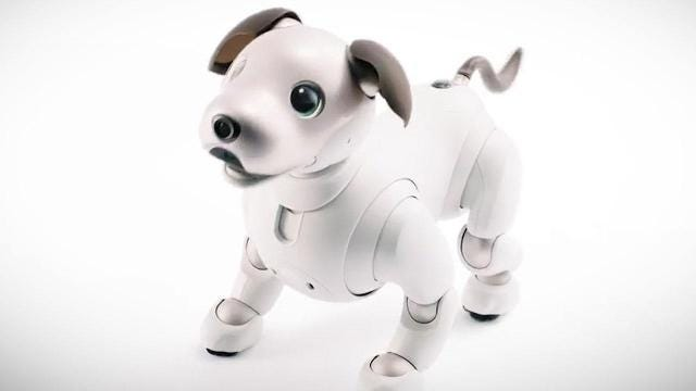 Sony's robotic dog is back