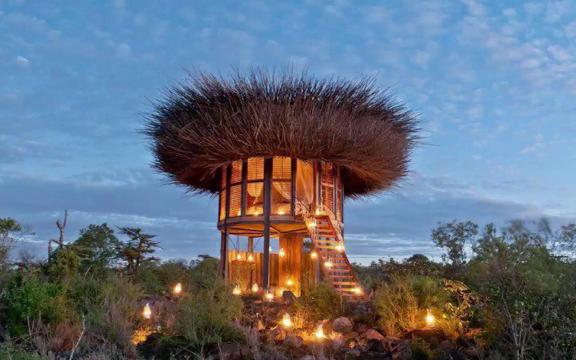 You can sleep under the stars in a luxury 'bird house' in Africa