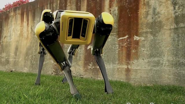 New robot dog SpotMini is smooth, sleek and a lot less creepy